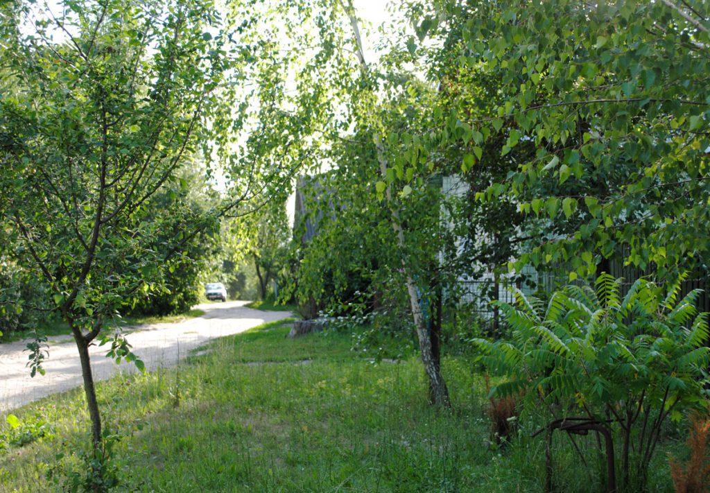 Правы бок вуліцы. Злева - тпарослы дрэвамі роў.